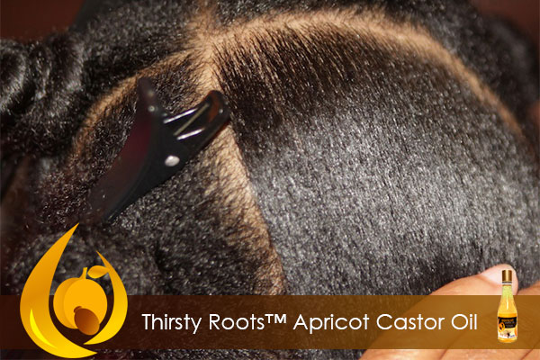 benefits of apricot castor oil for hair